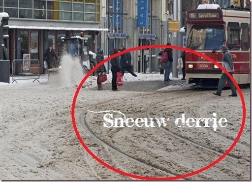 sneeuwderrie