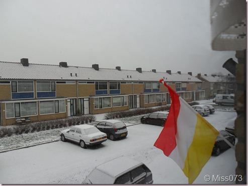 sneeuw2.0 005